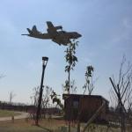 (引地川公園)大和ゆとりの森 は最新大型遊具が楽しい!飛行機も間近に見える。