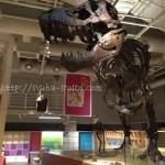 「親と子のたんけんひろばコンパス」がすごく楽しかったのでおすすめ@国立科学博物館
