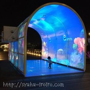 デックス東京ビーチ夜景 (2)