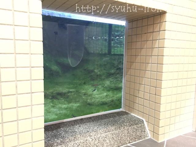 琵琶湖博物館トイレ