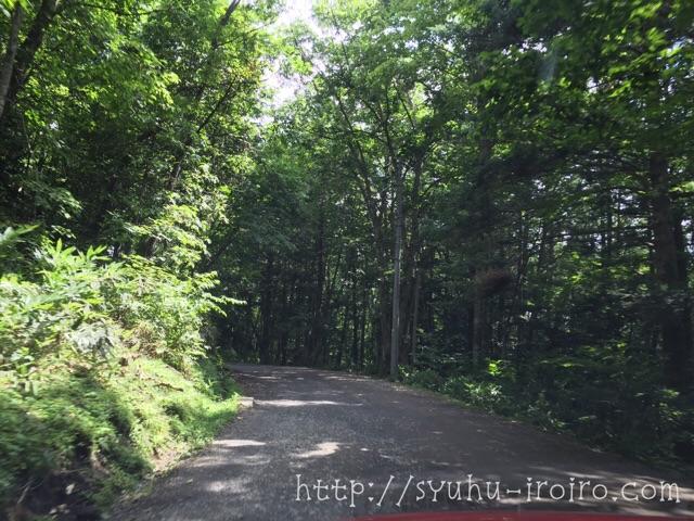忍者村への山道