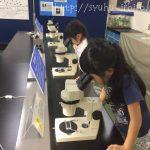 長野県から行ける雨の日の遊び場、上越科学館へ行ってきた