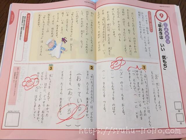 Z会小学生コース国語ハイレベル