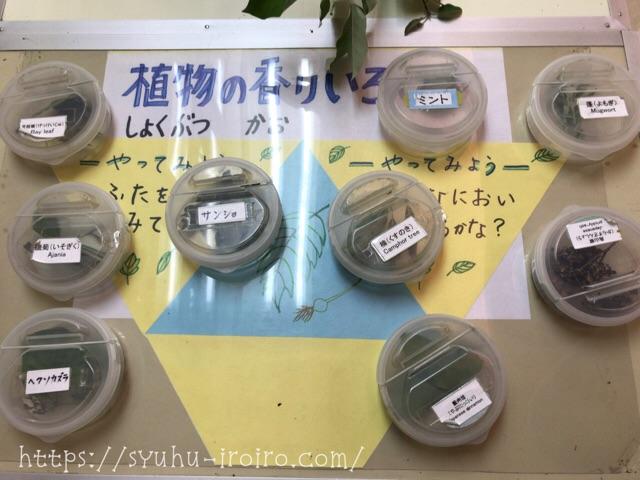 観音崎自然博物館くさい植物